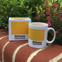 Brinsea Mug
