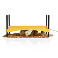 EcoGlow Safety 1200 Chick Brooder for up to 35 chicks