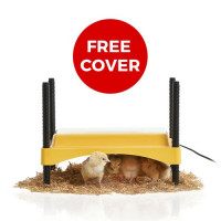 EcoGlow Safety 600 Chick Brooder - WITH FREE COVER
